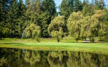 The Course: RESORT AT THE MOUNTAIN | The Wonder: Mt. Hood | The beauty of the surrounding Mt. Hood National Forest reminds you that you are standing near one of the greatest Wonders in Oregon.